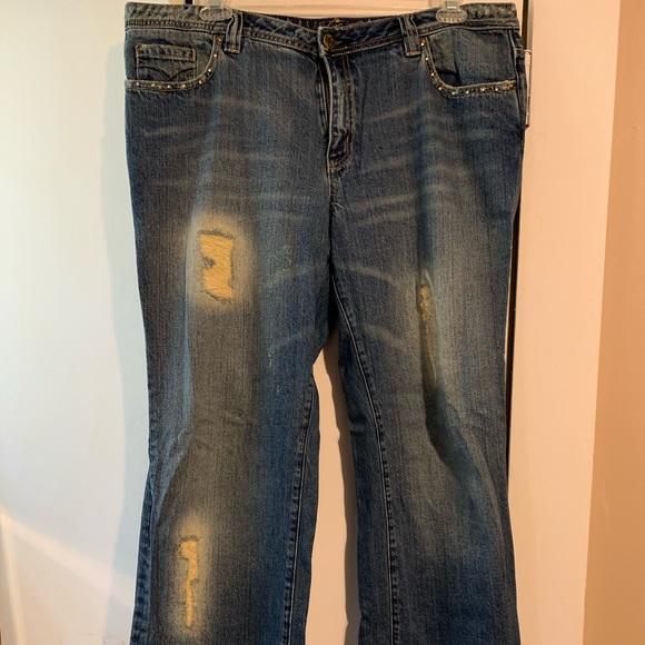 Venezia Denim - Lane Bryant Venezia embellished jeans, sz20